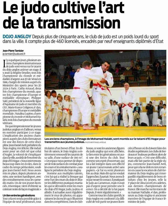 Article SO - Dojo Angloy